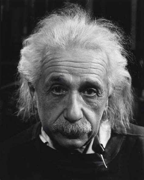 albert einstein biography name el acertijo de einstein que solo el 2 puede resolver