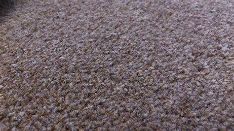 how to clean a polypropylene rug carpet fibres a guide to which carpet to buy jl carpetcleaning