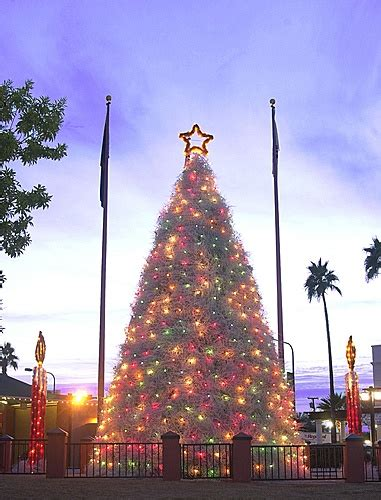 chandler az tumbleweed christmas tree arizona pinterest