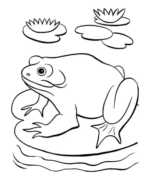 Free Coloring Pages Of Frog By A Pond Pond Coloring Page