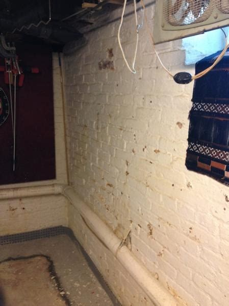 how to reduce humidity in basement reducing humidity in a utility basement doityourself community forums