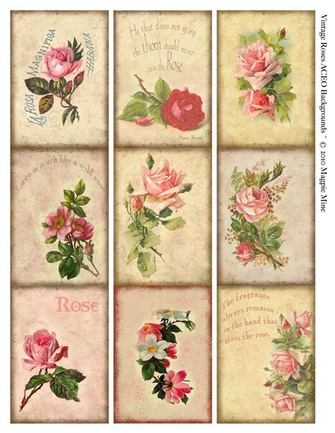 printable calendar vintage roses aceo background instant download aged paper pink roses