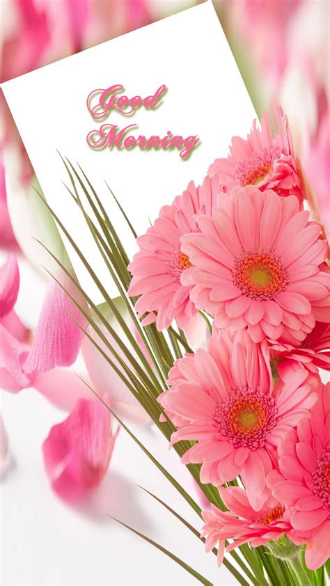 morning quote freeproducts morning with pink flower freeproducts