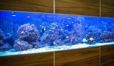 aquarium tafel maken aquarium maken van plexiglas plexiglas nl