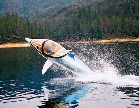 dolphin boat dolphin boat boat design net gallery