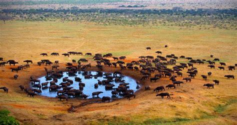 Sudafrica Imagenes | image gallery sudafrica