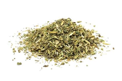 catnip for dogs anise for dogs is same as catnip for dogs but is it a idea
