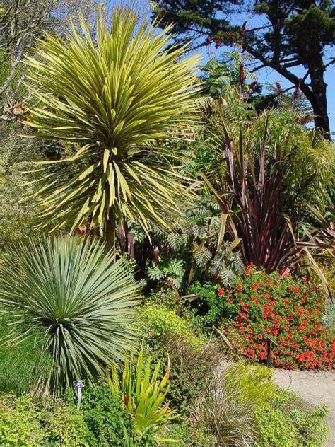 San Francisco Botanical Garden At Strybing Arboretum San Francisco Botanical Garden At Strybing Arboretum