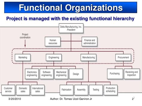 functional organizational chart template the functional organisation in organization types iibm lms