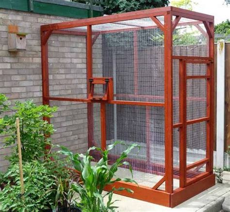 backyard aviary outdoor aviary quot i m sick of four walls and a ceiling i have need of the sky i have