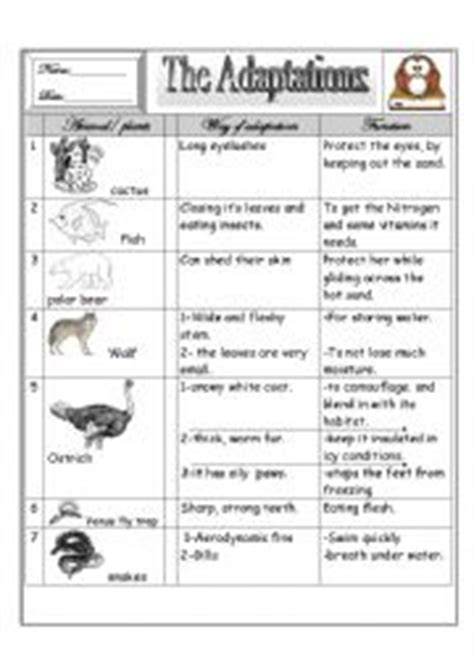 Adaptation Worksheet by Worksheets Places Worksheets Page 114