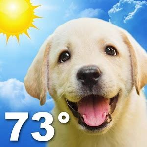 weather puppy weather puppy android apps on play