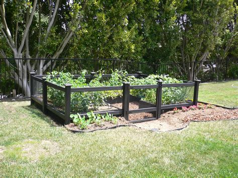 Small Home Vegetable Garden Ideas Diy Small Raised Vegetable Garden Along Black Wood And Wire Fence With Gate In The Backyard