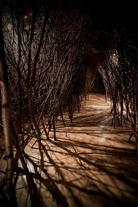 The forked forest path ? Artwork ? Studio Olafur Eliasson