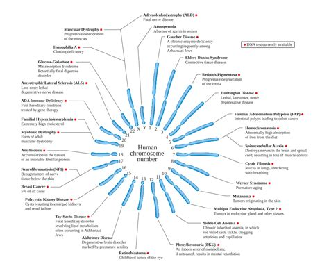 disease on y chromosome genetic disorder
