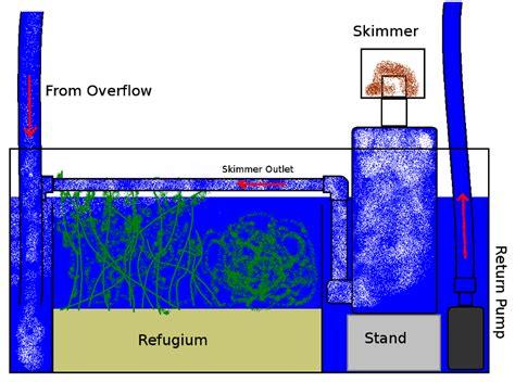 aquarium pump design reef workshop diy sump design 1 my aquarium