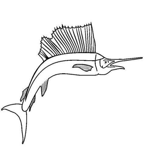 sailfish coloring pages sailfish coloring download sailfish coloring