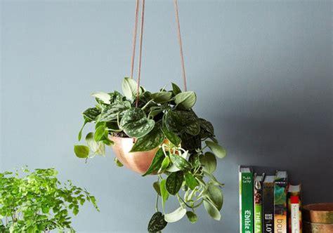 Bunga Goyang Motif Energy Solar Moving Plant Pot Murah featured shop in sek design etsy journal