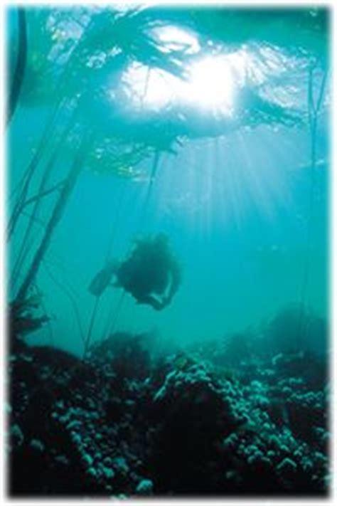 dive bc scuba diving nanaimo vancouver island columbia canada