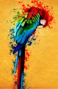 colorful drawings colorful parrot by boiuchiha on deviantart