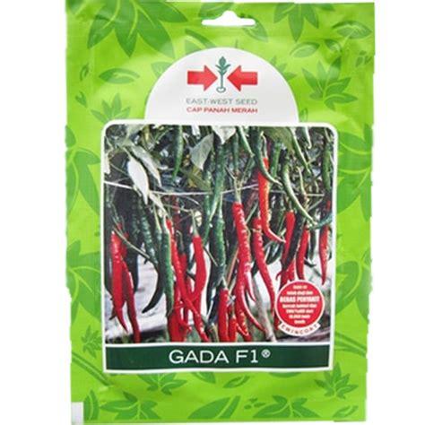 Benih Cabe Merah Besar jual benih cabe besar gada f1 125 biji murah bibitbunga