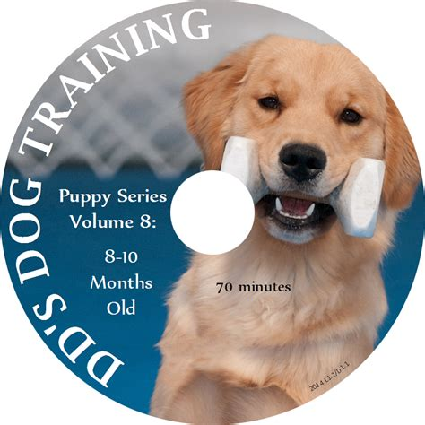 puppy series puppy series volume 8 8 10 months dvd dd s