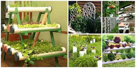 How To Build Small Pvc Pipe Vertical Vegetable Garden Pvc Pipe Vegetable Garden