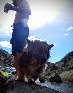 tales of the 10th west irregulars: nevada tripping