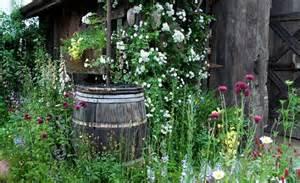 gardeners nightmare  compost brands  wont grow