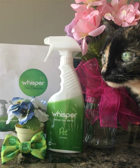 Petsmart Gift Card Check - win a 50 petsmart gift card and a whisper pet prize pack us ends 7 12