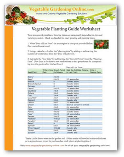 time plant vegetable garden   plant