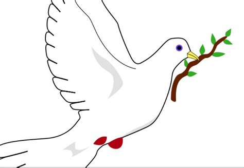imagenes de palomas blancas de la paz from paloma de la paz colouring pages