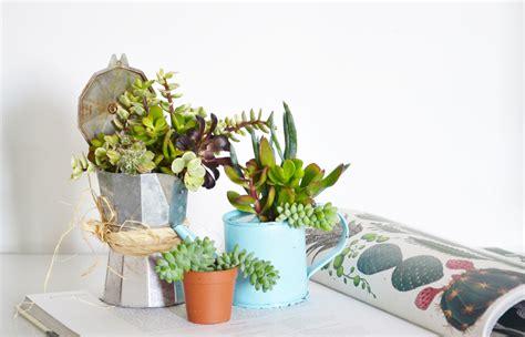vasi con piante grasse riciclo creativo come trasformare vecchi contenitori in