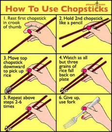 henley the great dane says quot boof quot how to use chopsticks