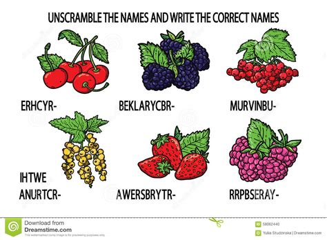 fruit unscramble unscramble names berries stock vector image 58062440
