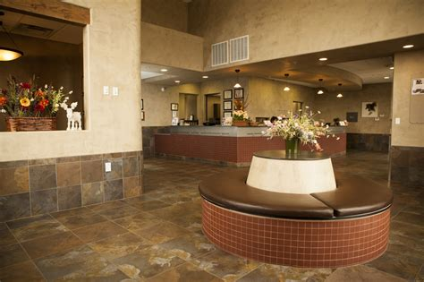 1000 images about veterinary interior ideas on pinterest 1000 images about vet hospital lobby ideas on pinterest
