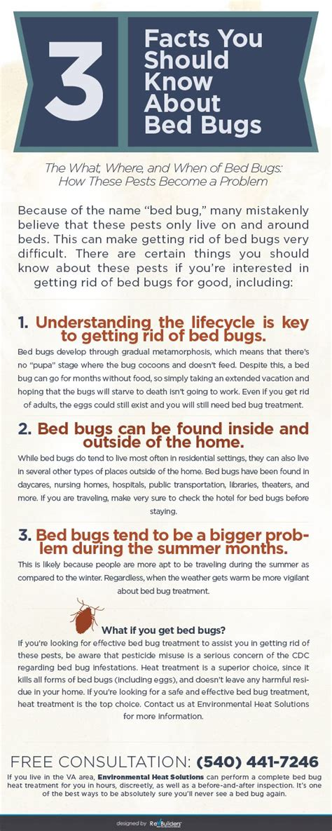 bed bug facts 18 best images about bed bug facts on pinterest how to