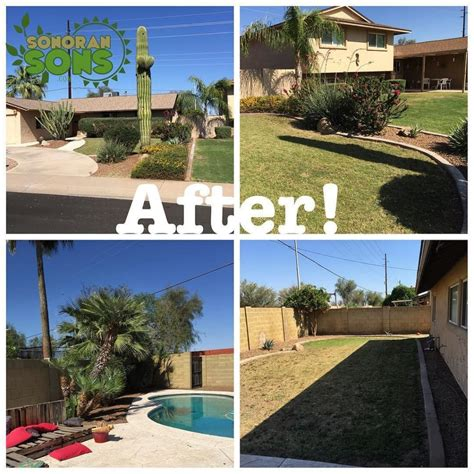 backyard clean up backyard cleanup services 100 backyard cleanup services one time yard clean