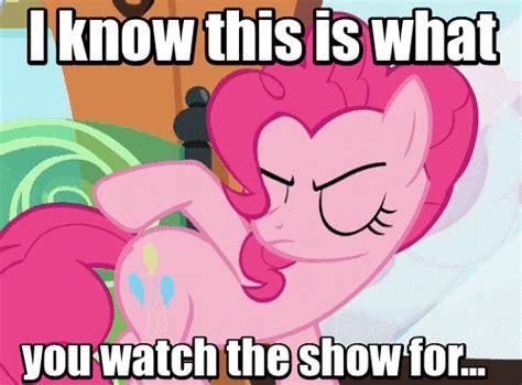 Magic Meme Gif - rub rub my little pony friendship is magic know