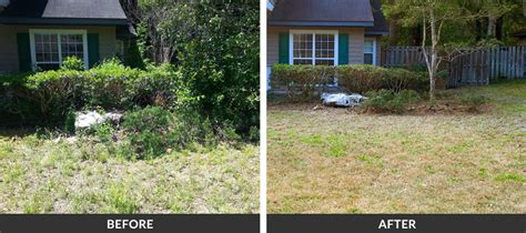 backyard cleanup services spring fall yard cleanup services in gainesville fl