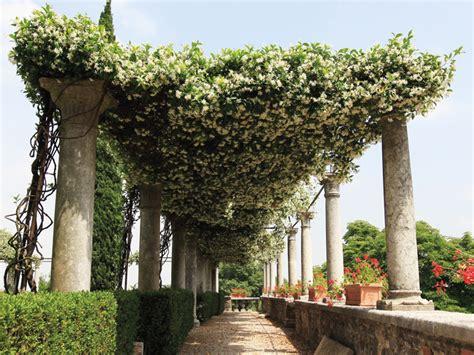 volta mantovana volta mantovana giardini di palazzo gonzaga