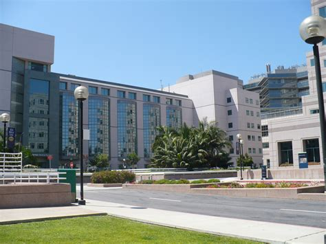 Cal State Dominguez Mba by David Geffen School Of Medicine At Ucla Wiki Everipedia