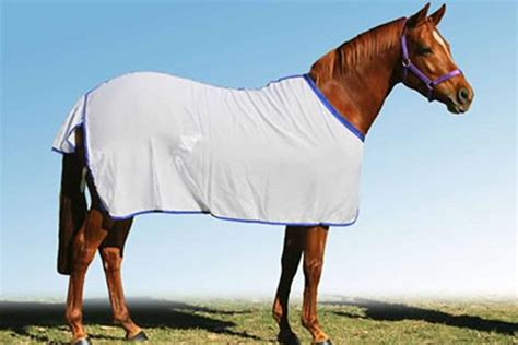 rugs for horses for sale flag rug top