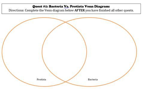 protist diagram mr miller s courageous scientists april 2014