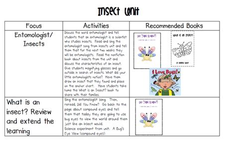 images of bee curriculum for preschool insects and a freebie mrs jump s class