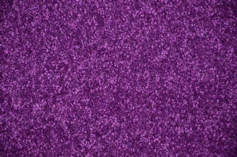 Grape Purple Plush 6 X 8 Bound Carpet Area Rug Modern Modern Purple Rug
