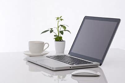 ufficio consumatori le piante in ufficio aumentano produttivit 224 e benessere