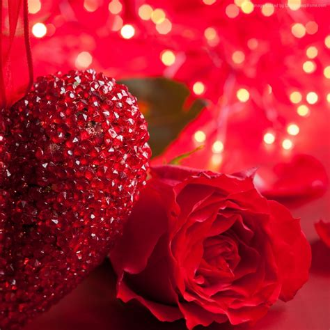 love you heart and roses part 756 heart love you rose wsource