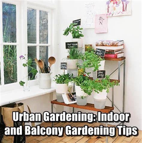 Gardening Indoors Gardening Indoor And Balcony Gardening Tips Shtf
