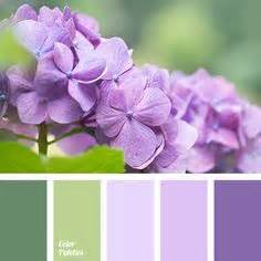 color palette ideas 1000 ideas about purple color palettes on